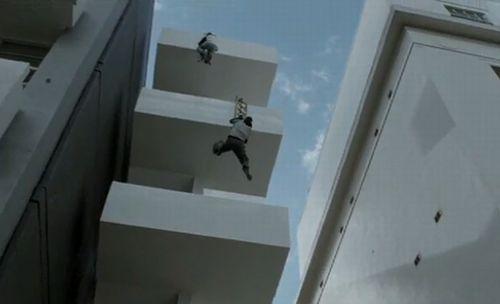 猫ははしごのような垂直の階段を登り降りできるの …
