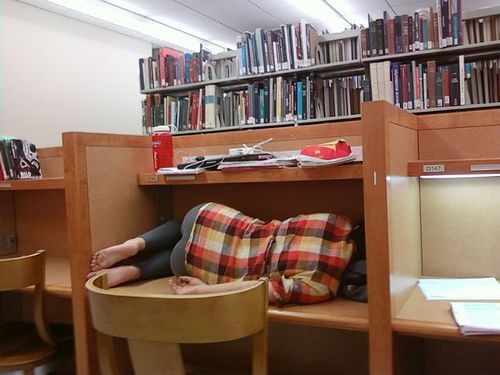 library_sleep_01.jpg