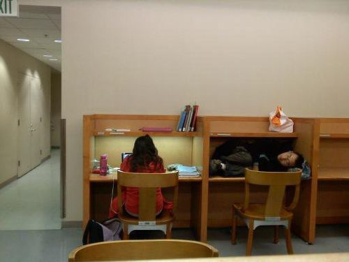 library_sleep_02.jpg