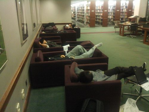 library_sleep_08.jpg