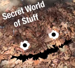 secret_world_of_stuff.png