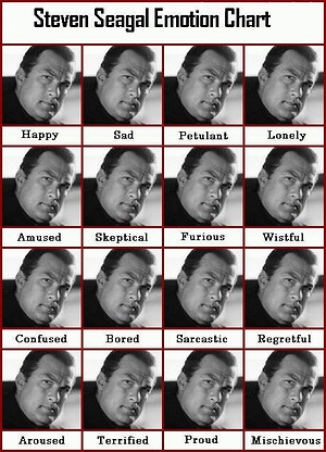steven-seagal-emotion-chart.jpg